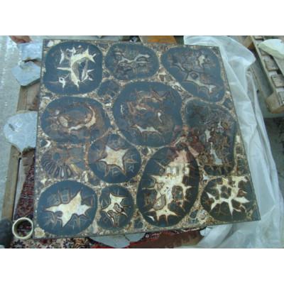 Эксклюзивный камень Конкреция-Септария (Аммониты)